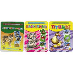 """Комплект из 3 наборов карточек """"Птицы, Млекопитающие, Насекомые"""" Проф Пресс"""