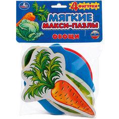"Макси-пазл ""Овощи"" (4 детали) Умка"