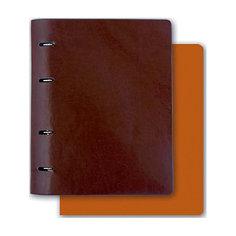 Тетрадь А5+ Феникс+, коричневый + светлокоричневый