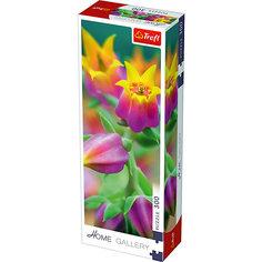 Пазлы Расцетающие цветы, 300 элементов Trefl