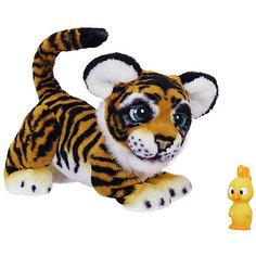 Интерактивная игрушка Hasbro FurReal Friends, Игривый тигренок рычащий Амурчик