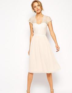 Платье миди с фигурным кружевом ASOS PETITE - Розовый