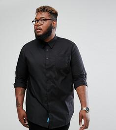 Черная строгая рубашка с длинными рукавами Duke PLUS - Черный
