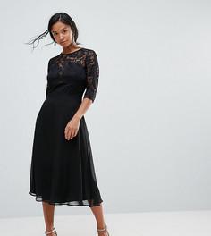 Кружевное короткое приталенное платье Elise Ryan Petite - Мульти