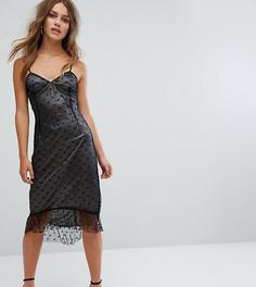 Облегающее платье с сетчатой накладкой и звездным принтом Boohoo Petite - Черный