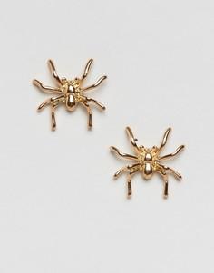 Серьги-гвоздики в виде пауков DesignB London Halloween - Серебряный