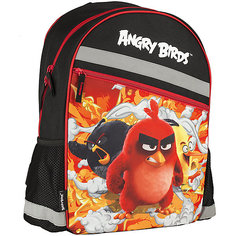 Школьный рюкзак Angry Birds Академия групп
