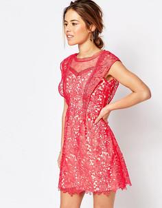 Кружевное платье мини с оборкой на рукаве Little Mistress Petite - Оранжевый