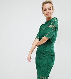 Кружевное платье с контрастной подкладкой и кисточками по краю Paper Dolls Petite - Зеленый
