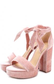 Бархатные босоножки Celine на устойчивом каблуке Alexandre Birman
