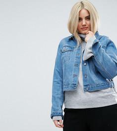 Синяя выбеленная джинсовая куртка ASOS CURVE - Синий