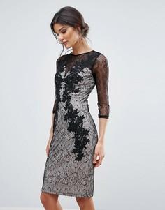 Кружевное облегающее платье с аппликацией Little Mistress - Черный