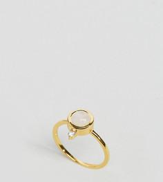 Покрытое 14-каратным золотом кольцо с лунным камнем Carrie Elizabeth - Золотой
