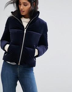 Бархатная пуховая куртка Tommy Hilfiger - Темно-синий