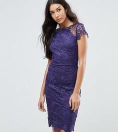 Кружевное платье с короткими рукавами Paper Dolls Tall - Фиолетовый