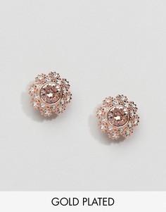 Серьги-гвоздики в виде цветов с кристаллами Ted Baker Seraa - Золотой