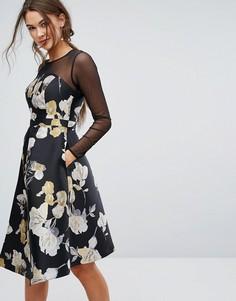 Платье с сетчатой вставкой Coast Mia - Мульти