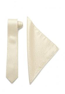 Комплект галстук и платок Carpenter