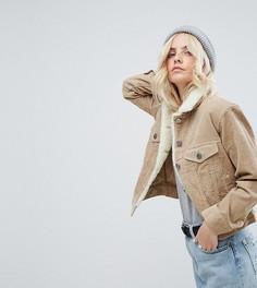 Светло-серая вельветовая куртка с воротником борг ASOS PETITE - Светло-серый