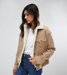 Серовато-бежевая вельветовая куртка с воротником борг ASOS TALL - Светло-серый