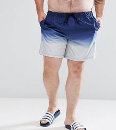 Темно-синие с серым шорты для плавания средней длины ASOS PLUS - Мульти