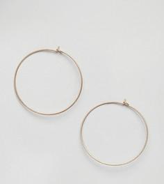 Позолоченные серьги-кольца Dogeared - Золотой
