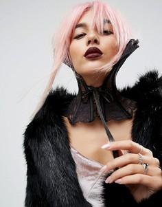 Черный кружевной воротник Regal Rose Halloween - Черный