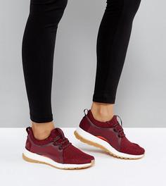 Бордовые кроссовки adidas Training Pureboost X - Мульти