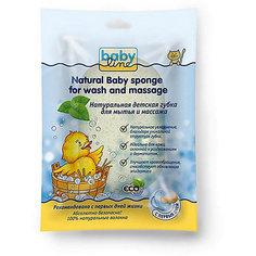 Натуральная детская губка для мытья и массажа с экстрактом Алоэ Вера, Babyline