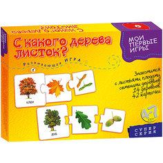 "Развивающая игра ""С какого дерева листок"", Дрофа-Медиа"