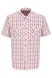 shirt Trespass