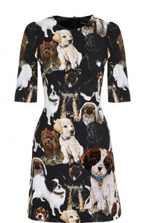Приталенное мини-платье с принтом Dolce & Gabbana
