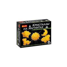 """Набор для опытов """"Кристаллы на магнитах (желтые)"""" Ранок"""