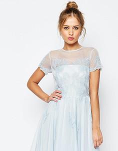 Короткое приталенное платье с кружевной аппликацией ASOS PETITE SALON - Синий