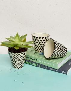 3 небольших горшка для растений с геометрическим дизайном Sass & Belle - Мульти
