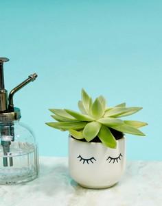Горшок для растений с принтом глаз Sass & Belle - Мульти