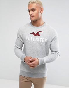 Серый свитшот с круглым вырезом и логотипом Hollister - Серый