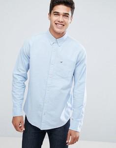 Синяя оксфордская рубашка на пуговицах Hollister - Синий