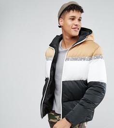 Дутая куртка колор блок с капюшоном ASOS TALL - Мульти