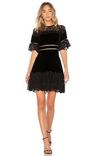 Платье - Rebecca Taylor