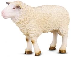 Фигурка Collecta «Овца» 8 см