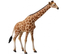 Фигурка Collecta «Сетчатый жираф» 16 см