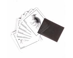Игровой набор Yako «Двигающиеся картинки»