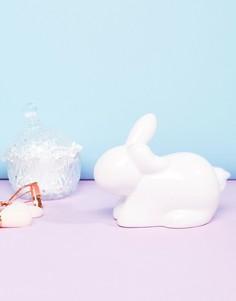 Диспенсер для ваты в форме кролика Paladone - Мульти