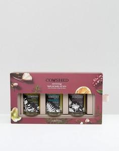 Набор из трех масел для тела и ванны Cowshed Reviving - Бесцветный