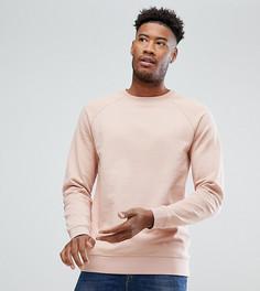 Розовый свитшот ASOS TALL - Розовый