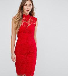 Кружевное платье-футляр с высоким воротником отделкой кроше Paper Dolls Tall - Красный