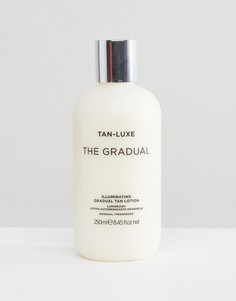 Лосьон для автозагара Tan Luxe The Gradual - Бесцветный