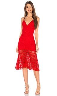 Кружевное платье diana - Karina Grimaldi