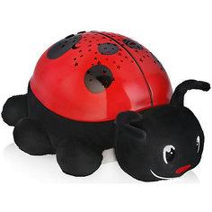 Светильник-проектор звездного неба Ladybird, Summer Infant
